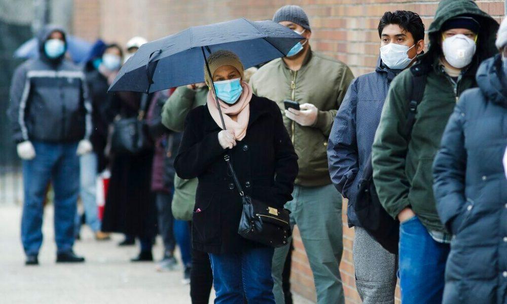 Gardening United States coronavirus death toll passes 50,000