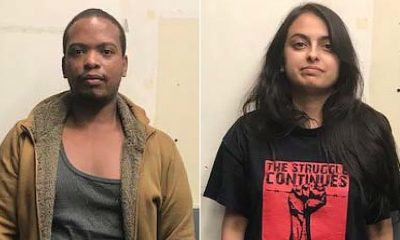 Dogs  puppies  baby dogs  baby puppies How two promising lawyers discovered themselves facing life in prison for alleged Bomb attack during protests in NY