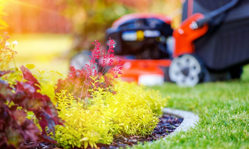 Gardening Lawn work can burn excess pounds placed on during coronavirus lockdowns, new study recommends