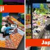 Recipes Here's What Grocery Stores Look Like In 30 Countries